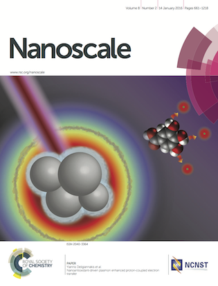 nanosale_cover